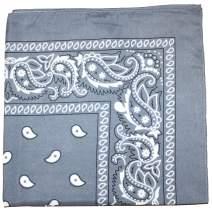 Mechaly Paisley 100% Polyester Unisex Bandanas - 30 Pack - Bulk Wholesale