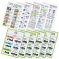 French Verbs & Beginner Vocabulary Classroom Variety Posters, Set of 11, 12 x 18 inches (Set G)