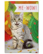 American Greetings Kitten Congratulations Card with Foil