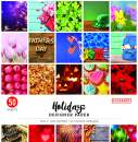 """Colorbok 12in Holidays Designer Paper Pad, 12"""" x 12"""""""