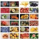 Creanoso Basic Fruits Identification Flashcards for Children (120-Pack) – Unique Educational Cards Gift Set – Great Stocking Stuffers Gift for Kids, Boys & Girls – Teaching Materials