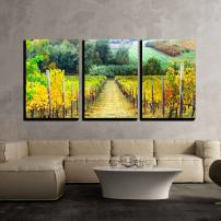 "wall26 - 3 Piece Canvas Wall Art - Beautiful Autumn Landscape with Vineyards. Tuscany, Italy - Modern Home Decor Stretched and Framed Ready to Hang - 16""x24""x3 Panels"