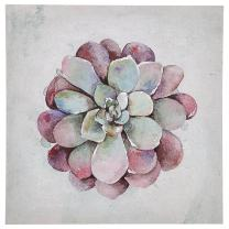 "Modern Green and Pink Echeveria Succulent Flower Print Wall Art Décor on Canvas - 24"" x 24"""