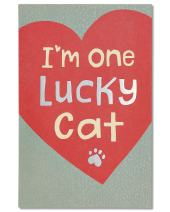 American Greetings Valentine's Day Card from Cat (Lucky Cat)