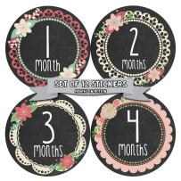 Months in Motion Baby Monthly Stickers - Baby Milestone Stickers - Newborn Girl Stickers - Month Stickers for Baby Girl - Baby Girl Stickers - Newborn Monthly Milestone Stickers