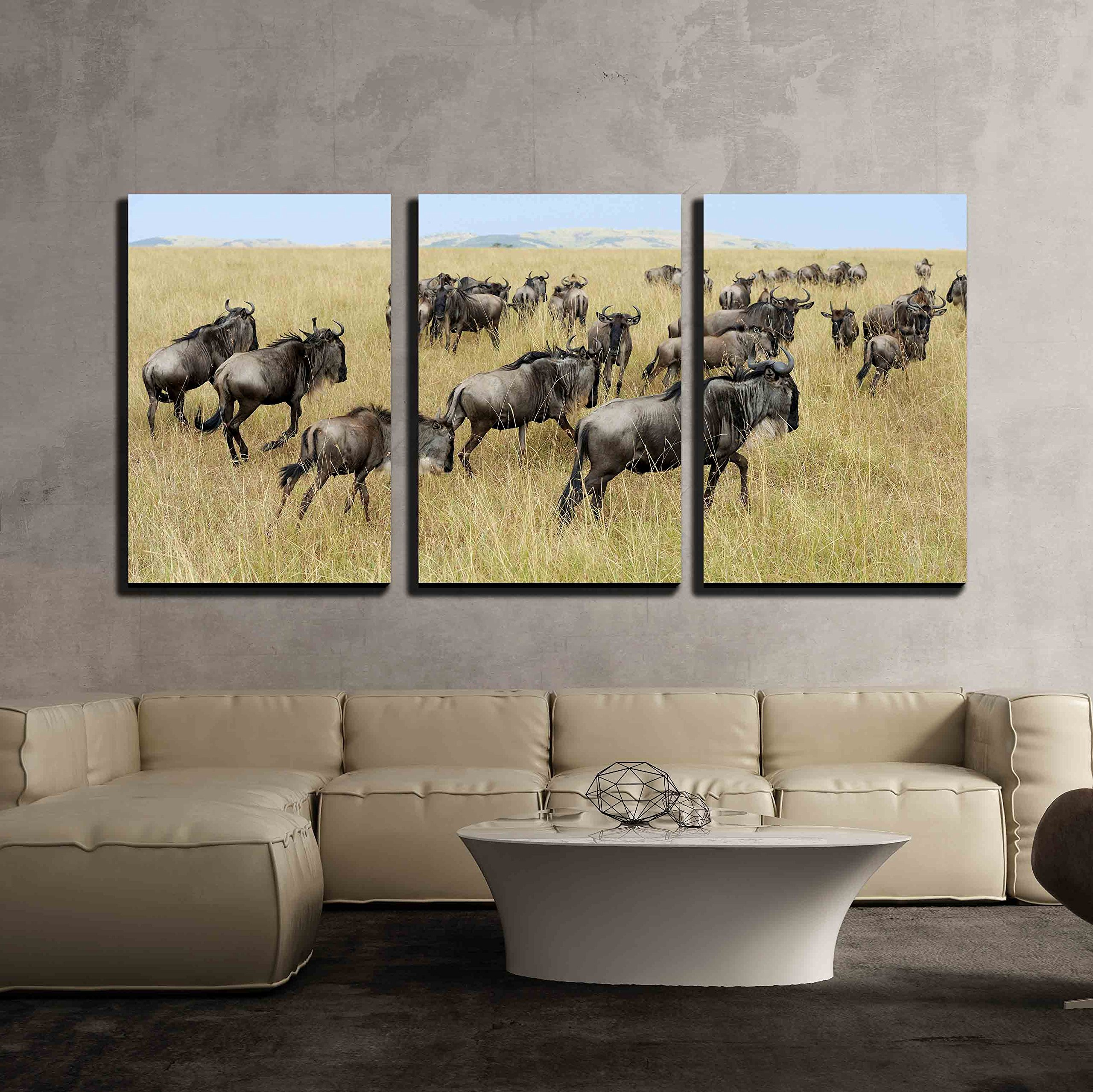 """wall26 3 Piece Canvas Wall Art - Wildebeest in National Park of Kenya, Africa - Modern Home Art Stretched and Framed Ready to Hang - 16""""x24""""x3 Panels"""