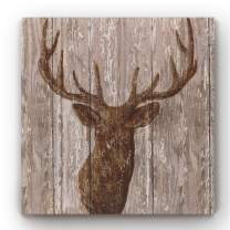 Renditions Gallery Modern Animal Vintage Wood Background Print Square Canvas Art for Home Wall Décor, 32x32, Majestic Deer