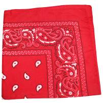 96 Pack Qraftsy Paisley 100% Polyester Bandanas - Bulk Wholesale