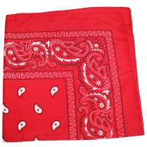 Qraftsy 100% Polyester Paisley XL Double Sided Bandanas 27 x 27 Inches / 68.58 x 68.58 cm - 12 Pack