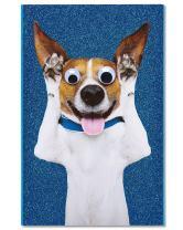 American Greetings Funny Birthday Card (Dog)