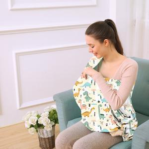colours dinosaur breastfeeding cover
