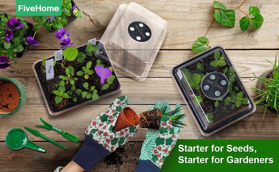 Get started immediately!