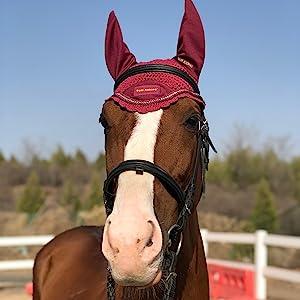 HORSE EAR BONNET