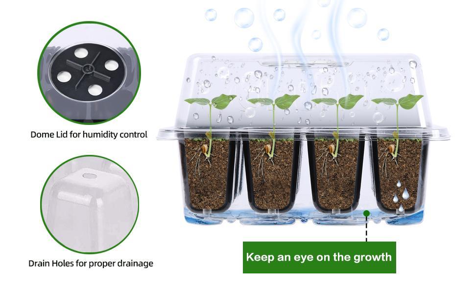 Keep an eye on the plants' growth!