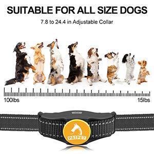 dog training collar for small dog