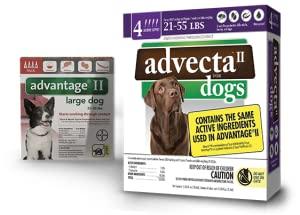 Advantage II, Advecta II