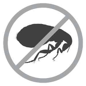 Kills Adult Fleas