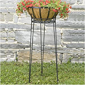 CobraCo Canterbury 30-Inch Black Scroll Top Plant Stand