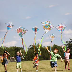 Fly your own kites