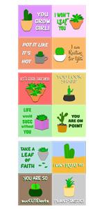 Cactus and Succulent Stickers