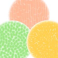 Solaray Acidophilus 3 Strain Probiotic & Prebiotic Carrot Juice 3 Billion CFU Vegan 30 VegCaps
