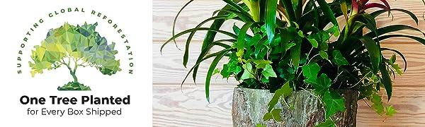 porch planters planter decor cool vintage unique rustic home idea farmhouse tall pot front woodland