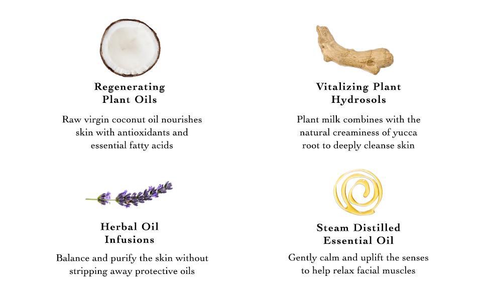 Ingredients, Coconut Oil, Plant Hydrosouls, Herbal Oil, Essential Oils