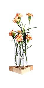 Test Tube Holder Wooden Stand Flower Vase Pots Propagation Station for Hydroponic Garden Decoration