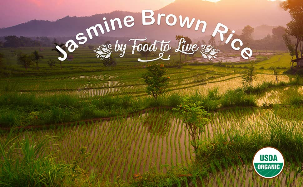 brown rice, food to live