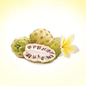 hawaiian noni fruit