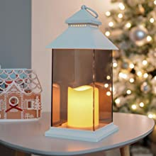 Perfect for indoor decoration