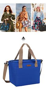 stylish lunch bag