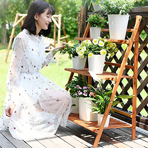 garden plant display shelf