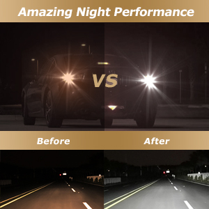 amazing night performance