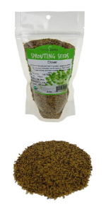 Organic Red Clover Sprouting Seeds