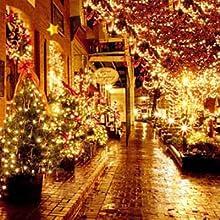 outdoor tree lights