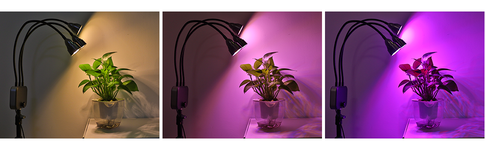 3 Modes & 10 Dimmable