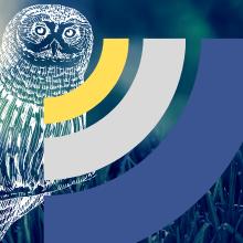 long range sensor fake owl statue owls pest repellent garden