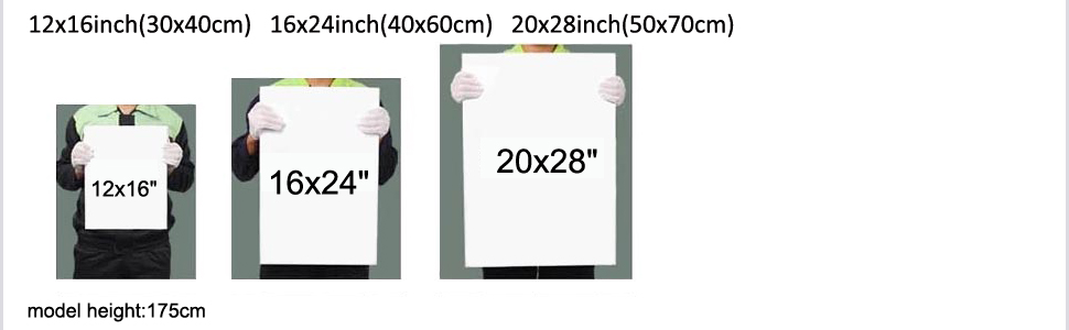 size reference