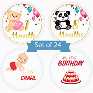 monthly stickers baby milestone boy baby months monthly milestone baby milestones