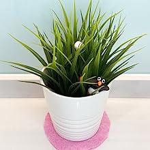 Plant Pot Base