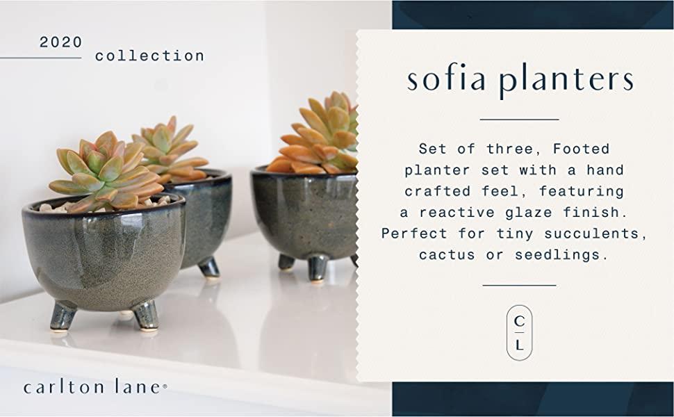 Carlton Lane Sofia Pots For Succulent Plants Set Of 3 Small Succulent Pots Ceramic Pot Blue Decor Planter Pot Set Ideal Succulent Planters For Home Office Window Sill Book Shelf