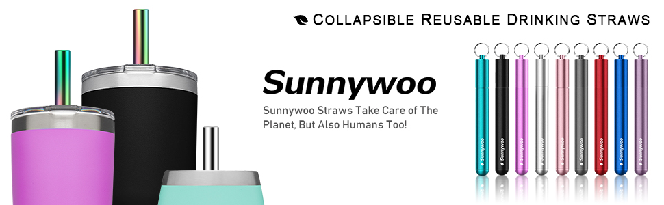 Reusable Collapsible Straws