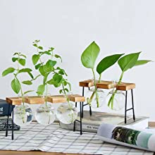 tables desktop rack pothos accessories metal holder stations tubes geometric vases garden