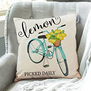 summer bicyle pillow