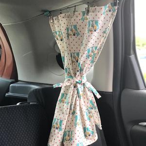 car curtain hook clips
