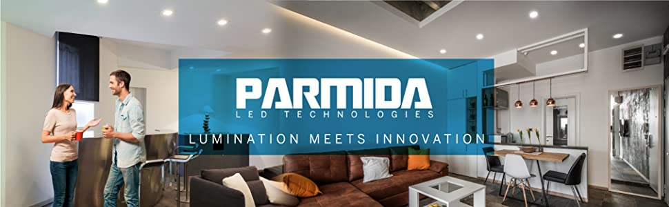 disk light 4 inch parmida led