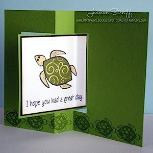 turtle snap