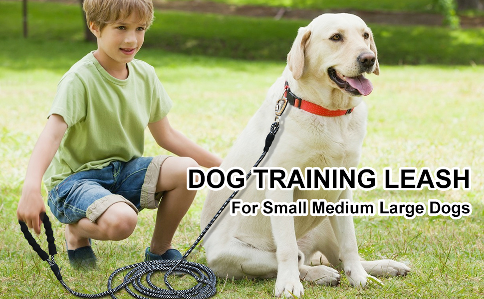 dog leash dog leash large dogs leash dog leashes for medium dogs dog leashes for small dog cat leash