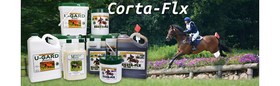 different products for variety of needs for your horse and animals